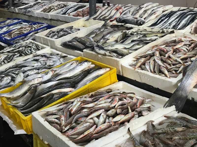 Выбор рыбной продукции небольшой, но зато все свежее